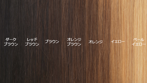 髪の明度と色素